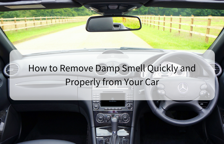 How to Remove Damp Smell Quickly and Properly from Your Car
