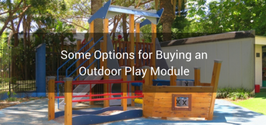 Some Options for Buying an Outdoor Play Module