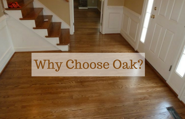 Why Choose Oak_